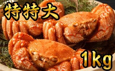 50-21 【数量限定】オホーツク産特特大!!毛ガニ1kg 3尾