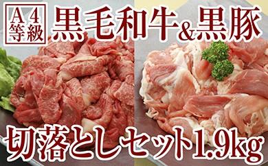 B2-2225/切落し特盛1.9kg!鹿児島産黒毛和牛&黒豚