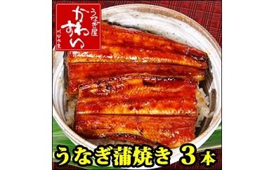 131 国産うなぎ蒲焼き 3本セット