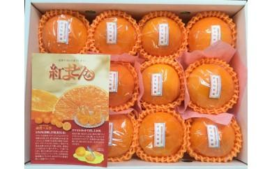 I-25.【高級柑橘】紅まどんな糖度12度化粧箱入り