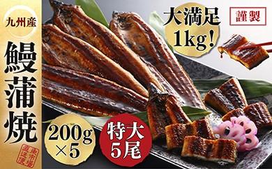 A1-03-02 【大感謝祭】九州産特大うなぎ蒲焼を超絶のボリューム1kg超えでお届け!