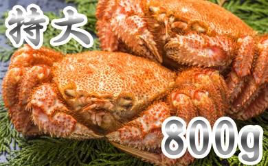 30-5 【数量限定】オホーツク産特大毛ガニ1.6㎏(800g×2尾)