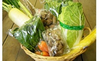 y018 【角田市産】季節の野菜 合同会社あぐりっとかくだ