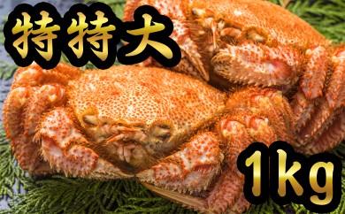 40-45 【数量限定】オホーツク産特特大!!毛ガニ1kg 2尾