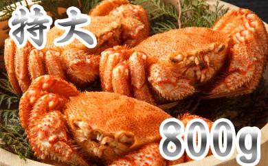 40-32 【数量限定】オホーツク産特大毛ガニ2.4㎏(800g×3尾)