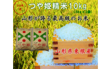 A-251 29年産_東根産米「つや姫精米」5kg×2(30年4月下半期送付分)