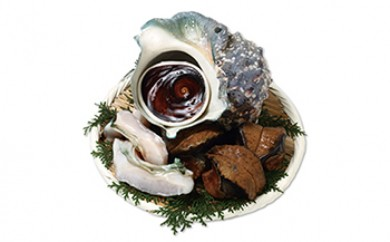T031 沖永良部島 海の宝石!夜光貝 殻と身5個セット【55,000pt】