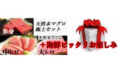 bik002 海鮮お楽しみ♪大人気の天然本マグロの大トロ200g・中トロ200g・赤身200gにビックリ海鮮お楽しみが付いてくる♪ 寄付額23,000円