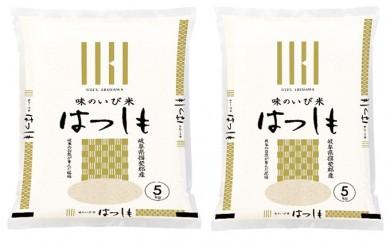 [№5644-0385]岐阜県揖斐郡産 味のいび米 はつしも 精米5kg×2袋