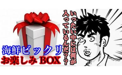 bik003 ドキドキわくわく♪奈半利と言えば福袋!海鮮ビックリお楽しみゴールドBOX 寄付額30,000円