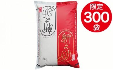 1-339 新潟県長岡産新之助5kg