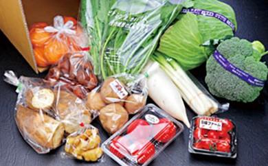 [№5829-0105]ふれあいの駅うりぼう おまかせ旬の新鮮野菜・果実セット
