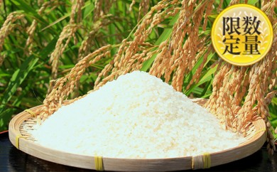[№5531-0013]富谷市産 郷の有機使用特別栽培米 ササニシキ 7kg