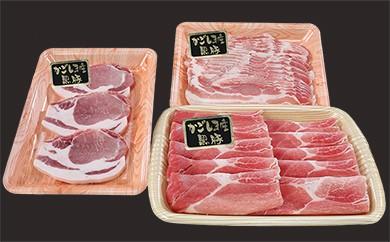 619 鹿児島黒豚ふるさとセット1.3kg B