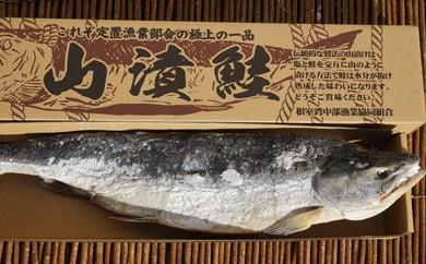 CB-54003 【北海道根室産】漁協手作り「鮭の山漬け」1本 [244764]