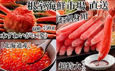 CB-22015 根室海鮮市場 刺身ずわいがに棒肉、本ずわいがに姿、いくら醤油漬け[422400]
