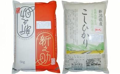 2-026 特別栽培米各5kgセット( 新潟県長岡産新之助・コシヒカリ)