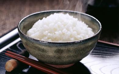 [№5789-0273]岡崎郷土の味、こしひかり10kg