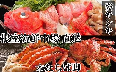 CD-22023 根室海鮮市場<直送>キンキ(めんめ)1尾、本たらばがに脚600g[422427]