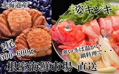 CB-22022 根室海鮮市場<直送>キンキ(めんめ)1尾、毛がに500~600g×2尾[422407]