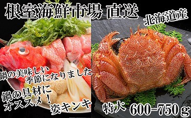 CD-22025 根室海鮮市場<直送>キンキ(めんめ)1尾、浜茹で毛がに600~750g×1尾[422429]