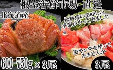CC-22012 根室海鮮市場<直送>キンキ(めんめ)3尾、浜茹で毛がに3尾[422418]