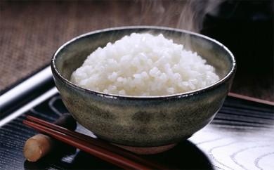 [№5789-0272]岡崎郷土の味、こしひかり5kg