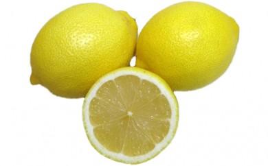 [№4631-1274]さぬきレモン 5kg【1月~発送分】