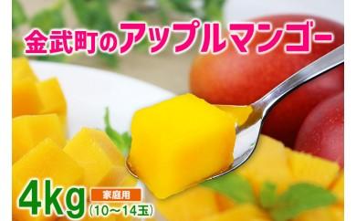 【2018年発送】金武町のアップルマンゴー◆家庭用◆約4kg(10~14玉)