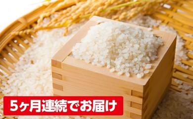 [№5972-0113]加東市のうまい米 ひのひかり 5kg×5回 計25kg【5回お届け】