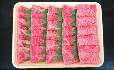 [№5906-0123]A5等級 飛騨牛モモ又はカタ肉 焼肉用 約800g(約400g×2P)