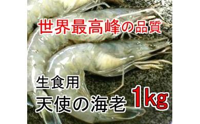 kan152 生食用♪最高品質の甘い海老♪天使の海老 1kg 寄付額10,000円