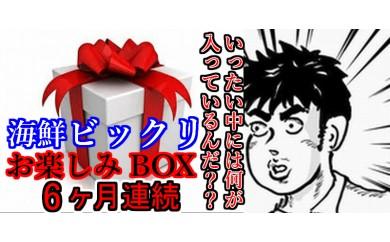 24teiki01 半年ビックリしよう♪奈半利のビックリ海鮮お楽しみ×6ヶ月 寄付額50,000円