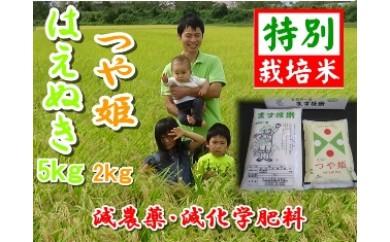 NA282 平成29年産 私が作ったはえぬき5kg・つや姫2kg【精米】