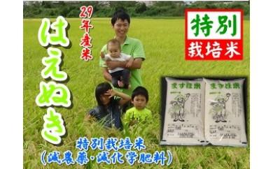 NB316 平成29年産米 特別栽培米 玄米はえぬき5kg×2 有機肥料・ミネラル肥料使用