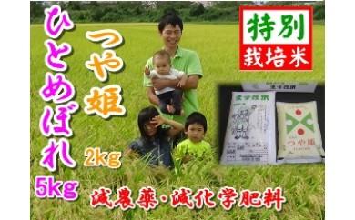 NA284 平成29年産 私が作ったひとめぼれ5kg・つや姫2kg【玄米】