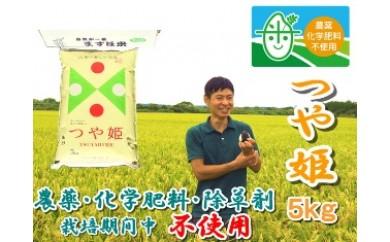 NA286 平成29年産 農薬化学肥料除草剤栽培期間中不使用つや姫5kg【玄米】