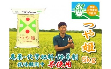 NA287 平成29年産 農薬化学肥料除草剤栽培期間中不使用つや姫5kg【精米】