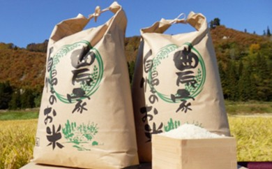 [№5633-0027]【中野米店】 29年度 只見産 コシヒカリ 10kg