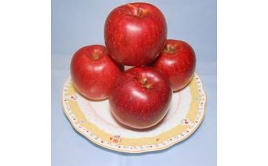横手産りんご 「あいかの香り」約5kg【1029241】