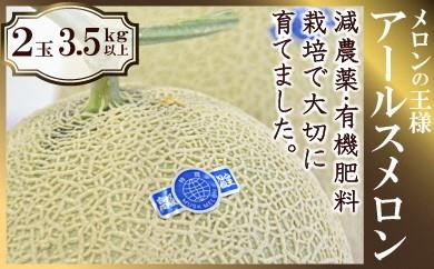 YD10 メロンの王様 アールスメロン 2玉(3.5kg以上)【25pt】