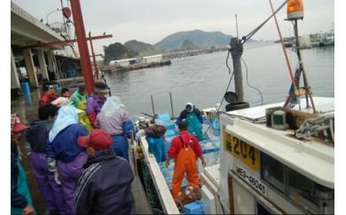 X-9船で行く!漁師町の島ランチ(答志島)【2名様】