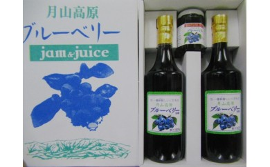 N30-503 月山高原ブルーベリージュース(2本)・ブルーベリージャム小(1個)セット