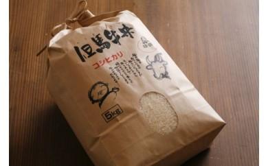 J-11 【新米】村岡産コシヒカリ15kg