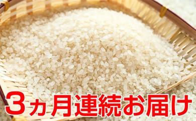 [№5822-0129]新米!【3ヶ月連続】特別栽培米コシヒカリ 5kg