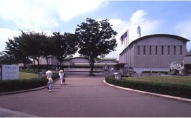 世田谷美術館年間フリーパス