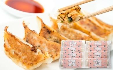 ■おおづちサケ餃子8パック