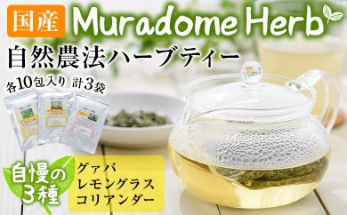 A-221 Muradome Herb Bタイプ