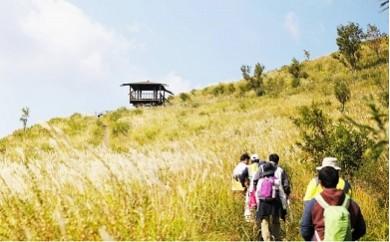 B0-002 黒川温泉街より出発!清流の森ガイドウォーキング ペアチケット