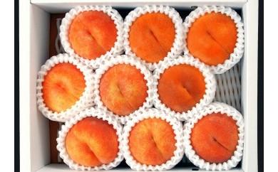 黄桃(黄金桃)3kg 010-B10